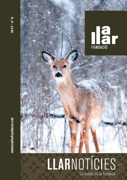 num6-gener2017-portada