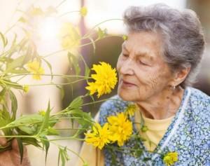 Activitat sensorial, especial Dia Mundial de l'Alzheimer @ Jardins de la Llar | Terrassa | Catalunya | Espanya